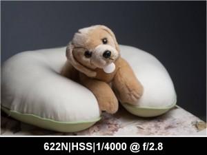 wpid885-622N.HSS_.TTL_.0EV.F2.8.4000.jpg