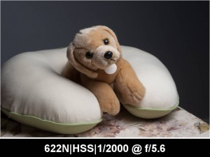 wpid891-622N.HSS_.TTL_.0EV.F5.6.2000.jpg