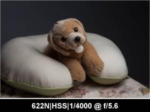 wpid893-622N.HSS_.TTL_.0EV.F5.6.4000.jpg