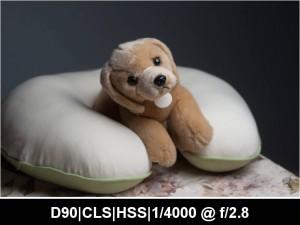 wpid917-622N.CLS_.HSS_.TTL_.0EV.F2.8.4000.jpg